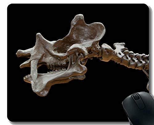 (Yanteng-Mausunterlage Custom Design, Dinosaurier Säugetier Wirbel Gaming Mouse Pad)