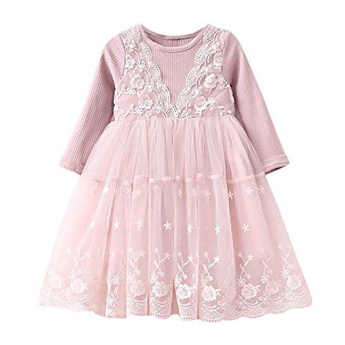 Net Garn Tutu Kleider Kleinkind Kinder, DoraMe Mädchen Spitze Blumen Mesh Prinzessin Kleid Lässig Rundhals Party Kleid 2018 Mode Neue Süß Kleid für 2-6 Jahr (Rosa, 3 Jahr) (Mesh-bügel-höschen)