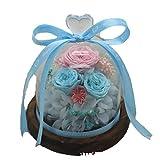 EVERY LOVE Schönheit Und Das Tier Stiegen, Getrocknete Rosafarbene Blume Der Ewigen Blumenglasabdeckung DIY