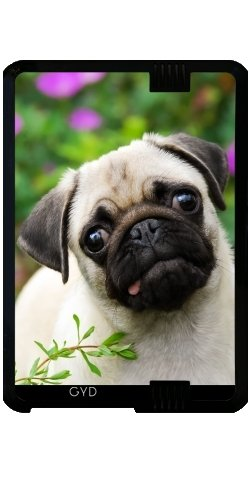 case-for-kindle-fire-hd-7-2012-version-cute-fawn-pug-puppy-by-katho-menden