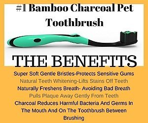 Pet-Dentist-Bamboo-Charcoal-Pet-Toothbrush-for-Dogs-and-Cats--Extra-Soft-Bristles-Dental-Care-for-Small-Medium-Large-Breed-Dogs