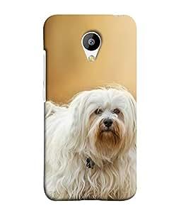 FUSON Designer Back Case Cover for Meizu M3 (Cute Puppy dog White Hairy Crazy look Cat )