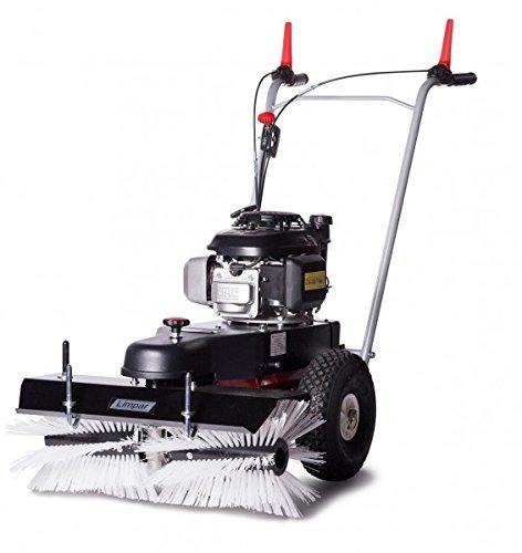 4F Kehrmaschine Limpar 67 Honda GCV Motor (Reinigung Tool Schneefräse)