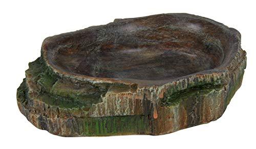 Trixie Reptil Selva decoración Agua Cuenco Comida