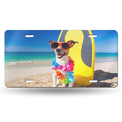 GanheuzeDogs Funny Jack Russell Terrier Glasses 612inchs Feel Metal Tin Sign Plaque for Home,Bathroom and Bar Wall Decor Car Vehicle License Plate Souvenir Car Decoration Jack Wall Plate