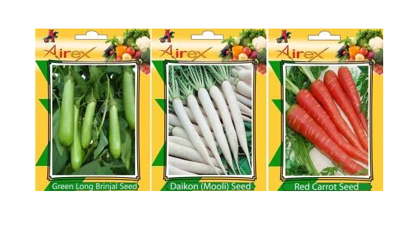 Pinkdose verde lungo melanzana e bianco lungo melanzana verdure Seed