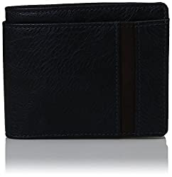 Baggit Blue Mens Wallet (2099103)