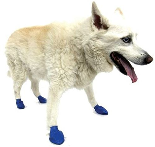 Pawz Dog Boots M,12 Pack, Blue 2