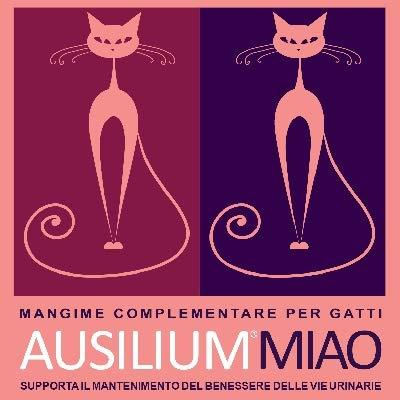 DEAKOS-Ausilium-Miao-300-g-Dose-Lebensmittelkomplex-fr-Chistitis-und-Infektionen-an-die-urinierten-Vie
