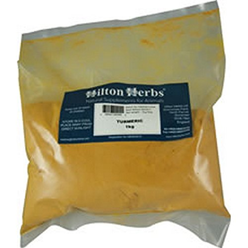 Hilton Herbs Kurkumapulver für Tiere (2-kg-Beutel) (Kann variieren)