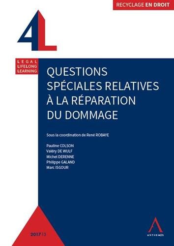 Questions spciales relatives  la rparation du dommage
