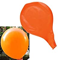 forviupet Colorful Celebration 12 Colors Party Birthday Decoration Wedding 2 Pcs Latex 36 Inch Balloons
