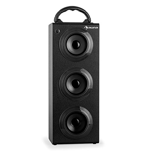 auna Beachboy XXL tragbarer Bluetooth-Lautsprecher mobile Akku-Lautsprecherbox (USB-SD-Slot, AUX, UKW-Radio, Tragegriff, Fernbedienung) schwarz