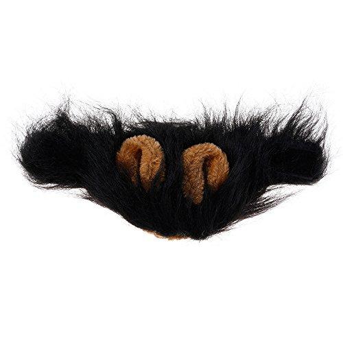 Kostüm Perücke lustige Löwe Mähne Ohren Kopf warme Mütze Schal mit Ohren Schwarz (Halloween-kostüme Mit Schwarzen Perücken)