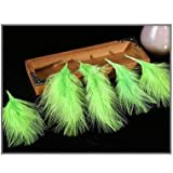 Shoppy Star Hochwertige gefärbte Truthahn-Feder, Straußenfeder, Pflaume für Zuhause, 15-20 cm, 15 Farben Pflaume, 50 Stück: Obstgrün