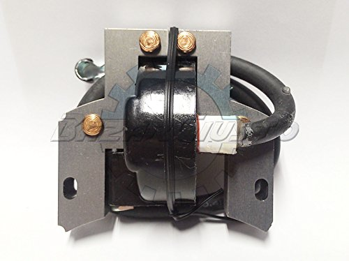 Spule Elektronische Zündung Briggs & Stratton 2–4HP (Acme Motor)