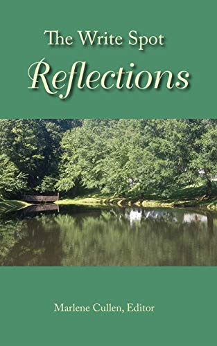 The Write Spot: Reflections (English Edition)