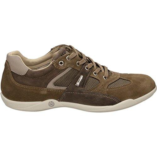 IGI&Co , Chaussures de sport d'extérieur pour homme TORTORA/BEIGE 41 EU TORTORA/BEIGE