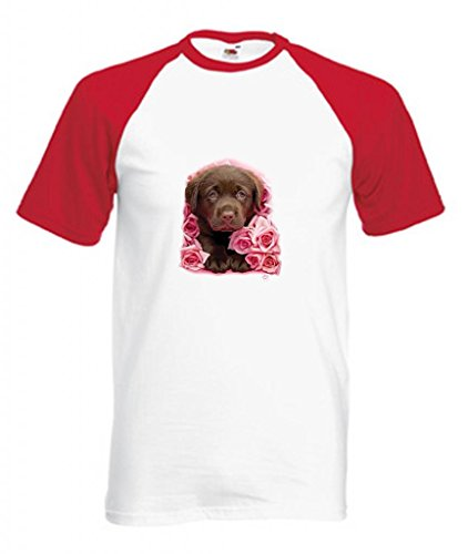 Erwachsene Schokolade Tee T-shirt (Simply Tees Einfach Tees Schokolade Labrador Puppy Georgie Erwachsene Short Sleeve Baseball T-Shirt Gr. XX-Large, Weiß/Rot)