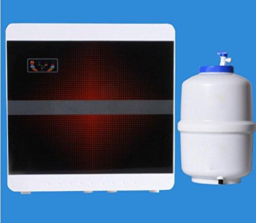 zh-purificador-de-agua-domestica-75g-boost75g-boost