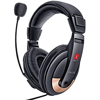 iBall RK25 Multimedia Headphones with Mic (Black)