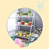 HUANDGA Metallo, scaffale a 5 piani, pieghevole, resistente alle intemperie, supporto per piante, larghezza xx: 160 x 36 x 36 cm, bianco