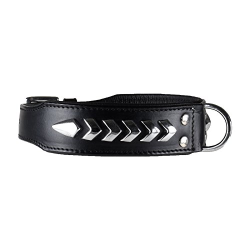 Mad Dog deLuxeIndianer Hundehalsband Leder Black Star Halsband schwarz Metall Verzierung V (S)