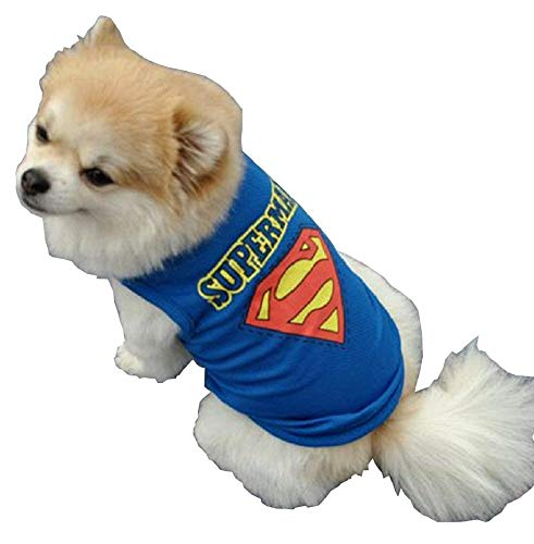 Superhelden Kostüm Für Hunde - EVRYLON Kostüm Superman Kinder Superhelden Hund aus Stahl Hund Verkleidung Halloween Cosplay Weihnachten oder Geburtstag