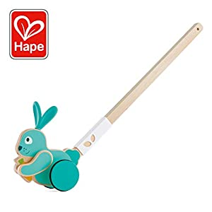 Hape International- Juguete, Color Colourful (E0358)