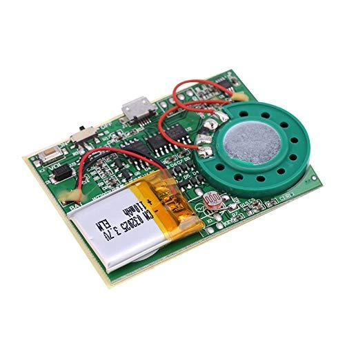 Zerone Re-recordable USB Musik Ton Sprachaufnahme Spieler Chip Modul 1W Aufladbarer Lithium Batterie mit 480 Sekunden Aufnahme für DIY Karten/Spielwaren (Lichtempfindlich kontrollieren)
