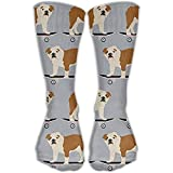 English Bulldog Skateboard Boys Compression Sockens for Wome and Men,