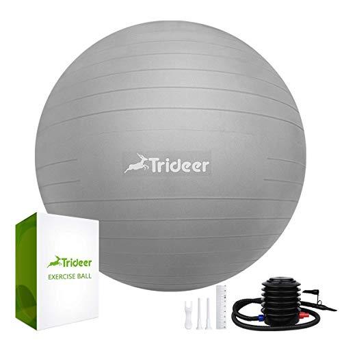 Trideer Dicker Anti-Burst Gymnastikball inkl Ballpumpe, Robuster 700kg Maximalbelastbarkeit Sitzball als Fitness Kleingeräte und Balance Stuhl im Gym-Home-Büro (Silber, L(58-65cm))