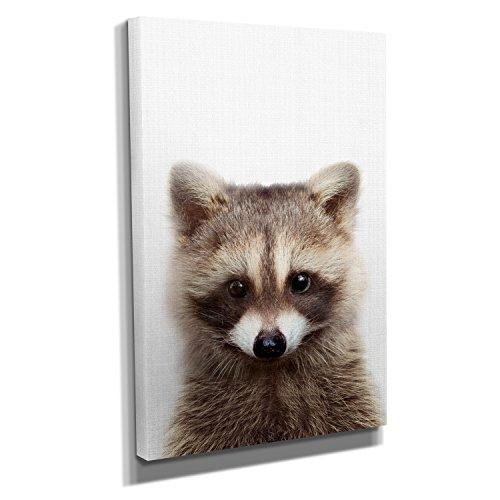 Nerdinger Raccoon Color Portrait - Kunstdruck auf Leinwand (40x60 cm) zum Verschönern Ihrer Wohnung. Verschiedene Formate auf Echtholzrahmen. Höchste Qualität.