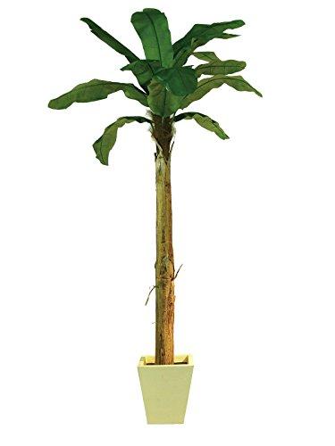 Unbekannt Bananenbaum 13 Blätter 270cm, Kunstpflanze