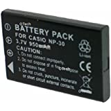 Batterie compatible pour TOSHIBA CAMILEO PX1333