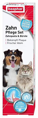 beaphar Zahnpflege Set   Zahnpasta & Zahnbürste   Für große und kleine Hunde   Für Katzen   Ohne Fluoride   Mit Lebergeschmack   1 Bürste & 1 Zahnpasta