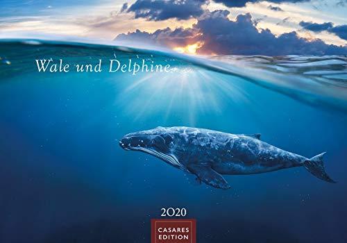 Wale und Delphine 2020 L 50x35cm