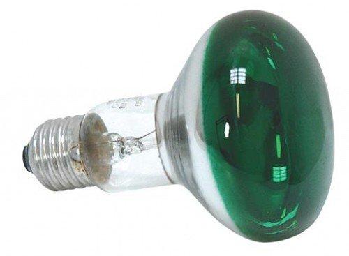 Paulmann Glühlampe EEK: E (A++ - E) 230 V E27 60 W Grün Reflektor dimmbar Inhalt 1 St. -