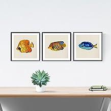 PACK de láminas para enmarcar TRES PECES. Posters cuadrados con imágenes de peces. Decoración de hogar. Láminas para enmarcar. Papel 250 gramos alta calidad