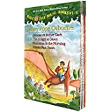 Magic Tree House Volumes 1-4 Boxed Set (Magic Tree House Collection)