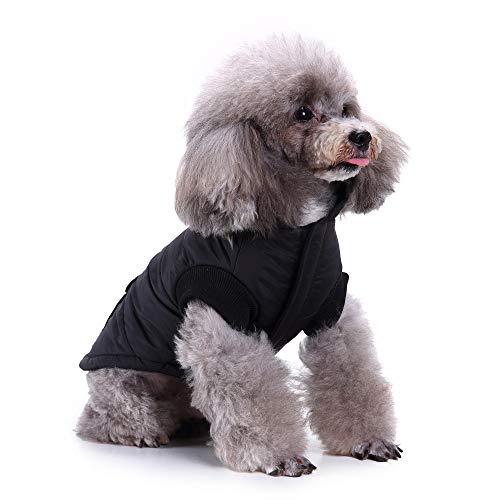 Xbeast Warme Jacke für Haustiere, modisch, Winddicht, reflektierend, mit Tasche, Baumwolle, für kalte Wetter, für kleine Haustiere (Taschen Reflektierende Halloween)