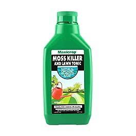 Maxicrop Pmkltydl 500ML Anti-Mousse et pelouse Tonic–Vert