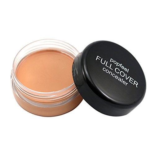Rrimin Cosmetic 3D Concealer Face Contour Makeup Powder Foundation Cream (FC03)