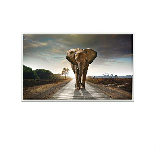 Eldstad Infrarotheizung 600W Thermostat Bildheizung Heizpaneel Infrarot Heizkörper Elektro Heizung mit Motiv (ohne Thermostat, Elefant)