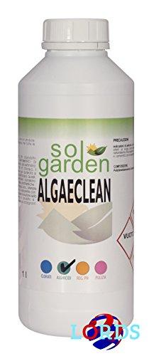 1lt-liquide-anti-algues-pour-traitement-de-la-piscine-limine-les-algues-algicide