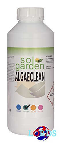 1lt-antialga-liquido-per-trattamento-piscina-elimina-alghe-alghicida