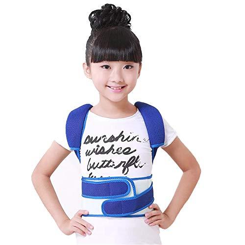 Summer Posture Correction Adjustable to Prevent Hunchback Support Back Support Children-Blue,M