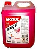 liquido antigelo INUGEL LONG LIFE 30% (ROJO) 5L