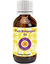 Pure Malkangani oil 50ml 100% Natural Cold presssed & Therapeutic Grade (Celastrus paniculatus) Malkangni Oil (jyotishmati Oil)