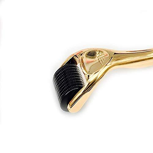 Microneedle Derma Roller Kit für Gesichtskörper - Titanium Microneedling Dermaroller Kosmetisches Nadelinstrument, Microdermabrasion Facial Roller (Size : 0.2mm) -